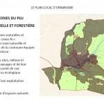 plu-zone-n